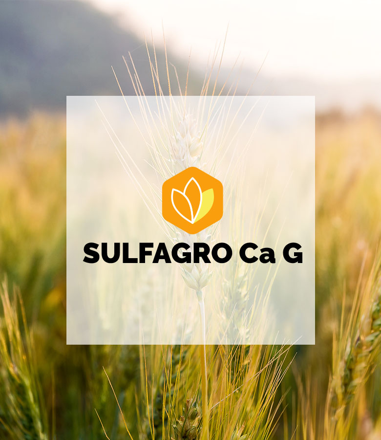 product-suflagroCaG