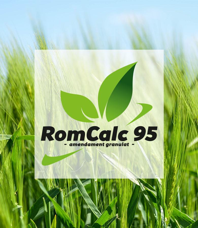 produs RomCalc 95